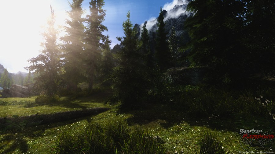 Skyrim Ultra Max Settings RealVision ENB Mod screenshot 3