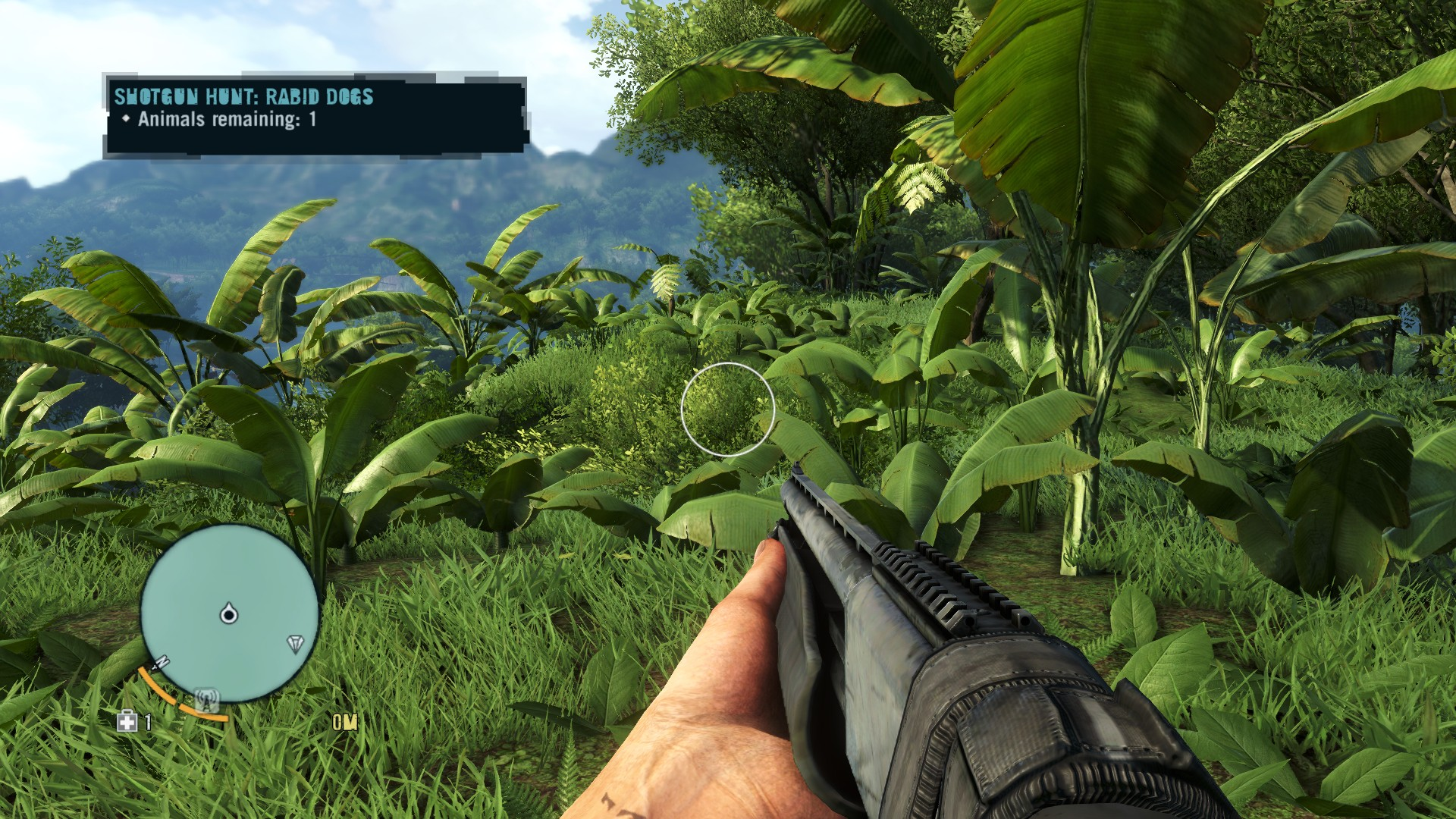 Far Cry 3 Max Settings Graphics & System Requirements